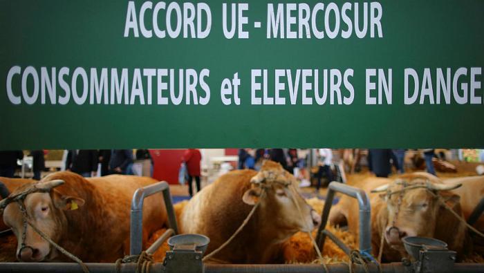 L'accord de commerce UE-Mercosur n'est pas compatible avec la lutte contre les dérèglements climatiques