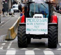 Accord UE-Mercosur : restons mobilisé.e.s pour bloquer cet accord !