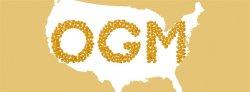 Bruxelles ne doit pas faciliter l'importation d'OGM des Etats-Unis